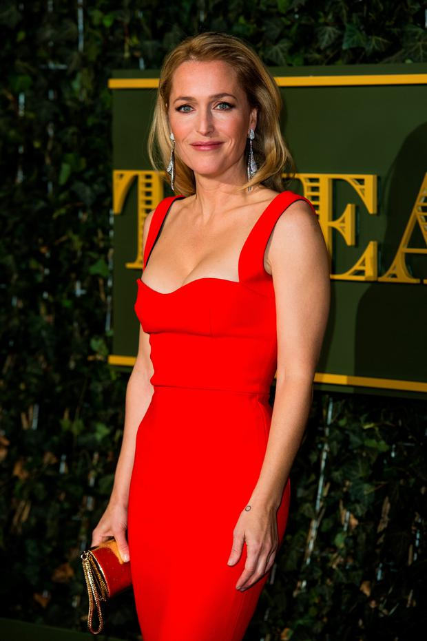 Back for more: Gillian Anderson