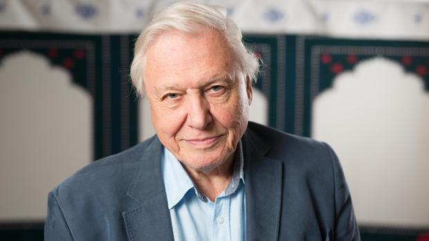 Sir David Attenborough spoke about the vulnerability of the BBC and his concerns for the planet