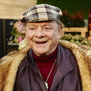 Sir David Jason as Del Boy