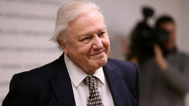 Sir David Attenborough was one of several BBC stars to sign the open letter