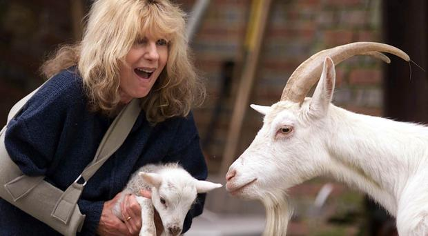 Carla Lane was renowned for her interest in animal rights