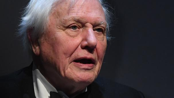 Sir David Attenborough voices his concerns in the short film