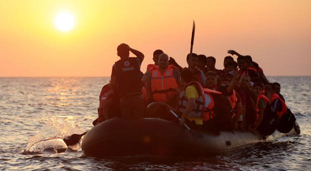 Sea Sorrow tells the story of the plight of refugees