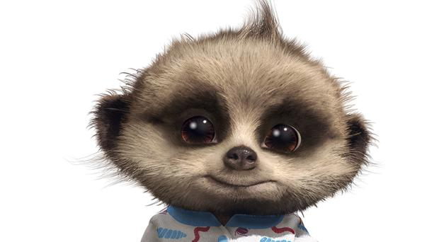 Baby meerkat Oleg is to be the star of the new comparethemarket.com advert (PA/Freuds)