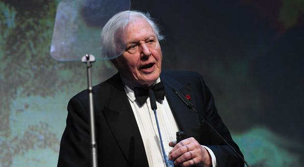 Veteran wildlife TV presenter Sir David Attenborough appeared as a castaway on Desert Island Discs for the fourth time in 2012