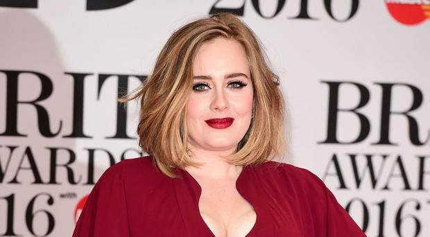 Adele was forced to halt her concert in Sydney when a fan suffered a cardiac arrest