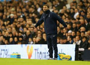 LONDON, ENGLAND - DECEMBER 18:  Tim Sherwood interim manager of Tottenham Hotspur gives instructions during the Capital One Cup Quarter-Final match between Tottenham Hotspur and West Ham United at White Hart Lane on December 18, 2013 in London, England.  (Photo by Paul Gilham/Getty Images)