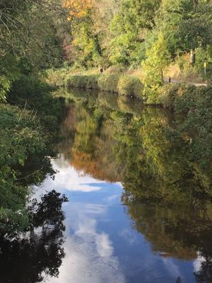 Hi, I thought this photograph that I took at Lagan  madows taken last Thursday (20-10-16). It was a eautiful afternoon....13c  Sunshine - Reflections - Idyllic - Nature at its best!!!  - Pauline Greenaway