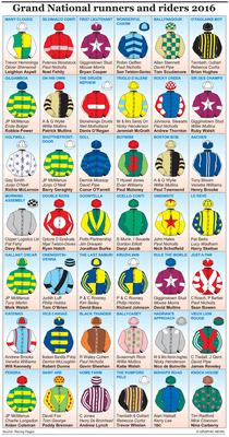 Graphic shows colours of runners in the 2015 Grand National
