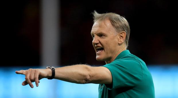 Joe Schmidt has ramped up pressure on the officials ahead of Saturday's World Cup clash with Japan (Adam Davy/PA)