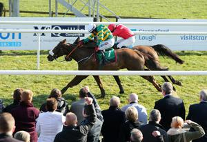 Snap happy: Riverside City, ridden by Davy Condon, wins Ulster National in a photo finish from Man With Van