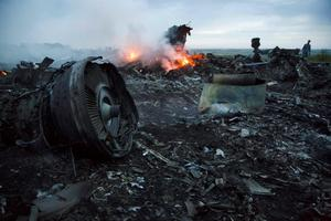 A man walks amongst the debris at the crash site of a passenger plane near the village of  Hrabove, Ukraine, Thursday, July 17, 2014. Ukraine said a passenger plane was shot down Thursday as it flew over the country, and both the government and the pro-Russia separatists fighting in the region denied any responsibility for downing the plane. (AP Photo/Dmitry Lovetsky)