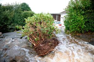 Vegetation is uprooted caused by water from flash flooding in the coastal village of Coverack in Cornwall. Ben Birchall/PA Wire