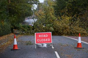 PACEMAKER BELFAST  16/10/2017 A fallen tree closes the Malone Road in Belfast   as  Storm Ophelia hits across  Northern Ireland on Monday,  The Met Office has an amber warning for very windy weather in place from midday through to midnight on Monday, affecting all parts of the region.  All schools have been closed for the day while QueenÕs University has cancelled classes. Photo Colm Lenaghan/Pacemaker Press