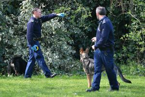 Police and sniffer dogs in Craig Park in north London (Dominic Lipinski/PA)