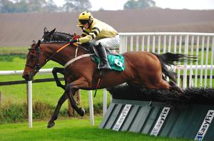 Up and over: Shek O Lad, ridden by Brian Kane, jumps the last on the way to winning the Ode To Autumn Handicap Hurdle at Downpatrick yesterday