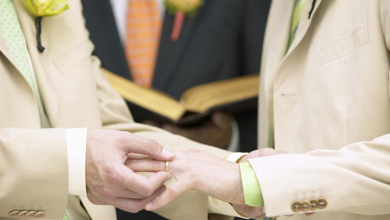 Pope's civil union remarks raise hopes, doubts for gay catholics