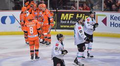 The Sheffield Steelers celebrate scoring against the Belfast Giants