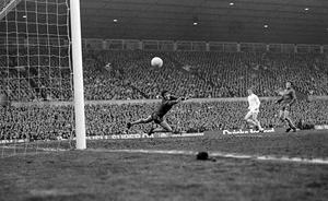 Peter Bonetti was known as 'The Cat' (PA)