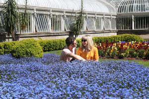 Press Eye - Weather Pictures - 7th May 2017 Photograph By Declan Roughan  William Crawshaw and Becky Holdich from Leeds visiting Belfast for the weekend enjoy the sunshine in Botanic Gardens.