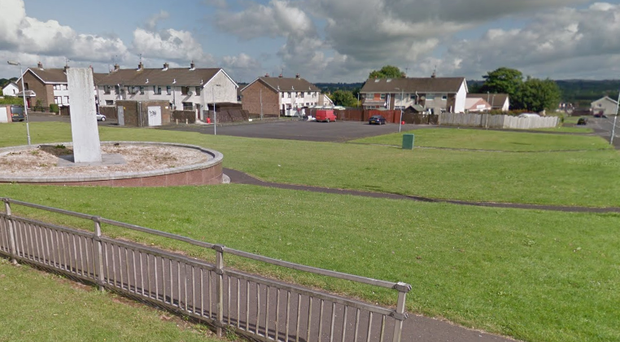 The incident occurred in the Orkney Drive area of Ballymena.