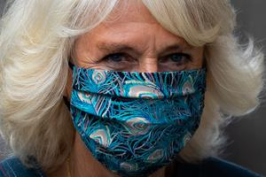 Camilla's mask was a birthday present from a friend (Aaron Chown/PA)