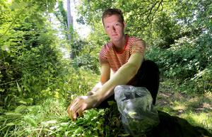 Will Brown foraging for ingredients