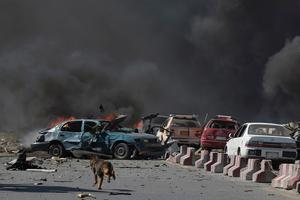 A dog is seen running at the site of a car bomb attack in Kabul on May 31, 2017. Photo: Shah Maraishah Marai, AFP/ Getty Images