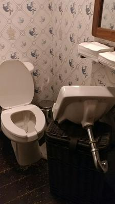 The trashed bathroom of the Dead Rabbit bar in New York.