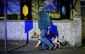 Special firearms officers during an incident in the Forthriver Dale area of Belfast on March 31st 2020 (Photo by Kevin Scott for Belfast Telegraph)