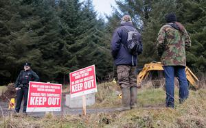 Pictured is the scene at Woodburn forest on March 10, 2016  Belfast, Northern Ireland ( Photo by Kevin Scott / Belfast Telegraph)