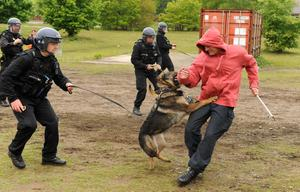 Police officers including members of the PSNI undergo riot training including the use of dog handlers at Longmoor Army Camp ahead of the G8 meeting in Northern Ireland. PRESS ASSOCIATION Photo. Picture date: Wednesday May 29, 2013. See PA story POLICE G8. Photo credit should read: Andrew Matthews/PA Wire