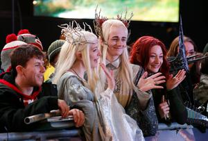 Fans wait alongside the green carpet for the premiere of The Hobbit: Battle of the Five Armies, at the Odeon Leicester Square in central London.