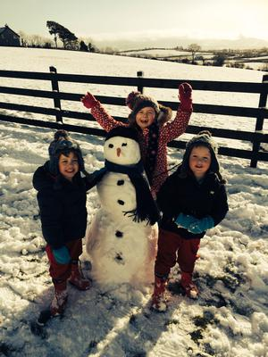 The McNeill family - twins Cathal and Caolan (3) and big sister Aoife (6) enjoy a day off school in Annaclone, Co Down. Pic: Paula McNeill (29/01/2015)