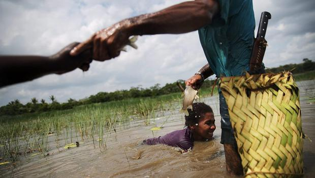 Afro-Brazilians fish with traditional methods practised for centuries in a wetland area of a deforested section of the Amazon basin on November 21, 2014 in Maranhao state, Brazil.   (Photo by Mario Tama/Getty Images)