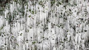 A wall of icicles formed on a bush in Worcestershire (David Davies/PA)