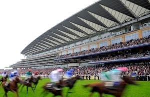 ASCOT, ENGLAND - JUNE 20:  Runners go past the grandstand in the 	King George V Stakes on Ladies' Day during day three of Royal Ascot at Ascot Racecourse on June 20, 2013 in Ascot, England.  (Photo by Charlie Crowhurst/Getty Images for Ascot Racecourse)