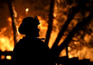 CLEARLAKE, CA - AUGUST 02:  A Cal Fire firefighter looks on as the Rocky Fire burns through trees on August 2, 2015 near Clearlake, California. Over 1,900 firefighters are battling the Rocky Fire that burned over 22,000 acres since it started on Wednesday afternoon. The fire is currently five percent contained and has destroyed at least 14 homes.  (Photo by Justin Sullivan/Getty Images)