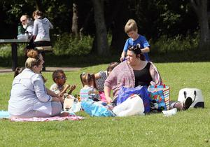 Mandatory Credit - Picture by Freddie Parkinson/Press Eye © Tuesday 30th June 2015 Loughshore Newtownabbey in the warm weather.