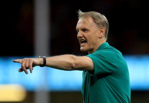Joe Schmidt will submit his 31-man World Cup squad to World Rugby on Monday (Adam Davy/PA)