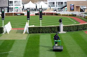 Grounds staff cut the grass ahead of the Cheltenham Festival