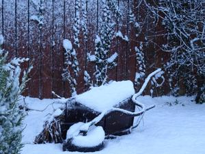 Snowfall in Northern Ireland by Maureen McHenry. Submitted January 2017