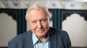 Sir David Attenborough is fronting a TV appeal to help save the conservation charity (David Parry/PA)