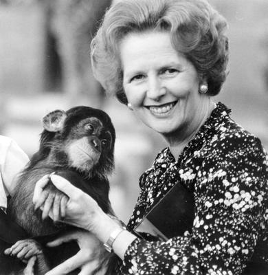 1985:  (FILE PHOTO)  Baroness Margaret Thatcher, 85, Britain's Prime Minister from 1979 to 1990, Reports on April 8, 2013 state that Baroness Thatcher has died following a stroke.. Please refer to the following profile on Getty Images Archival for further imagery.  http://www.gettyimages.com/Search/Search.aspx?EventId=108930459&EditorialProduct=Archival   British prime minister Margaret Thatcher holds a chimpanzee in 1985.   (Photo by Keystone/Getty Images)