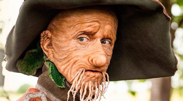 Mackenzie Crook as living scarecrow Worzel Gummidge