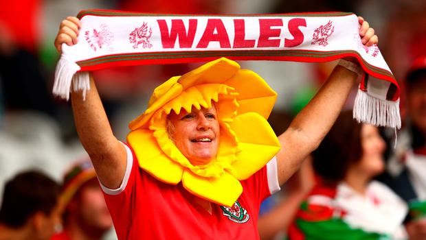 LILLE, FRANCE - JULY 01:  A Wales fan shows the support prior to the UEFA EURO 2016 quarter final match between Wales and Belgium at Stade Pierre-Mauroy on July 1, 2016 in Lille, France.  (Photo by Clive Rose/Getty Images)
