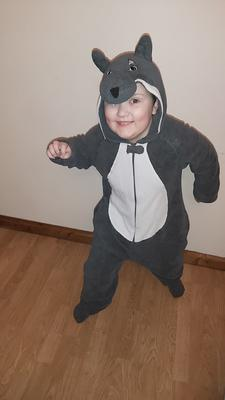 Evan Simpson age 7 from Newtownabbey as the Big Bad Wolf