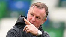 Pointing the way: Michael O'Neill is fully focused on the game in hand tonight