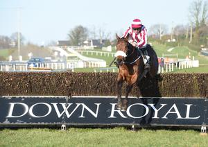 Down Royal is a firm favourite with punters from across this island, running 12 meetings a year including the forthcoming prestigious Festival of Racing next month