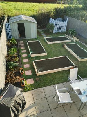 Dympna and Benjamin created rows of vegetable plots where the lawn used to be